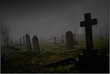 canvas print picture - foggy graveyard