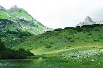 wild mountains