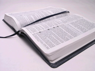 open bible book 1