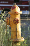 weathered hydrant poster