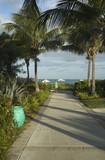 walkway to beautiful tropical beach poster