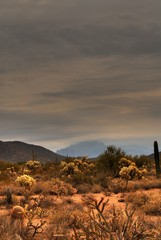 desert storm approaching 8