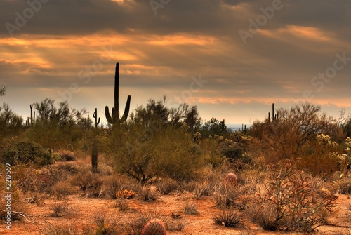 Leinwandbild Motiv desert storm approaching 7