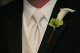 tux cali lilly white black tie shirt man boy groom poster