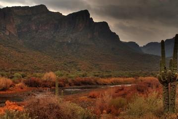 desert storm approaching 11