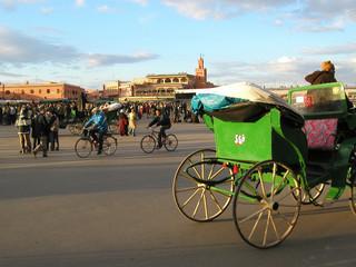 maroc, marrakech : place djema el fna