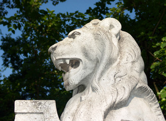 lion on a statue in budapest, hungary.