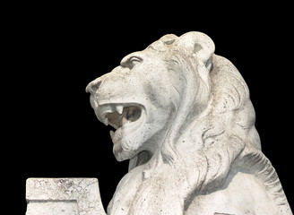 white marble lion balck background