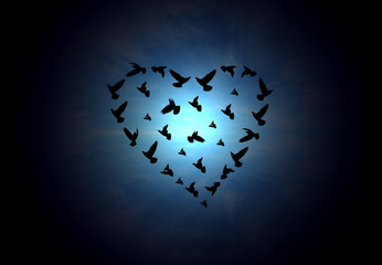 heart shaped birds