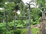 prehistoric trees poster