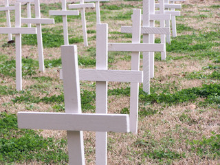 little crosses