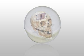 bola de cristal con la muerte