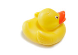 yellow ducky