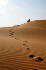 liwa desert 27