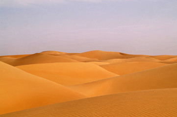 liwa desert 16