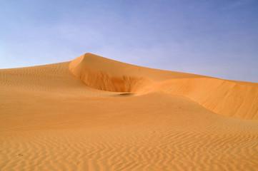 liwa desert 10