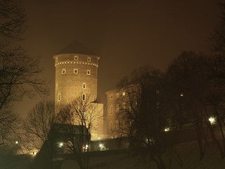 wavel castle