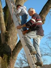 grand père et petit fils grimpant sur une échelle