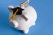 education savings - 2278342