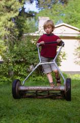 summer mowing