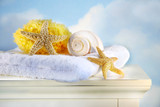 sea shells and towel on cabinet poster