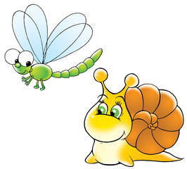 snail and dragon-fly