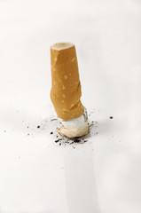 cigarette ecrasée