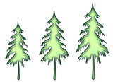 ice green evergreens poster
