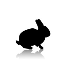 rabbit black illustration