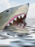 shark looking for lunch poster