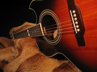 guitar and a fur coat