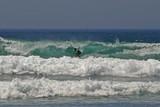 atlantic ocean with surfer poster
