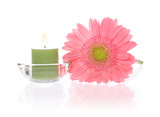 ping gerbera and aromatic candles
