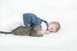 kitten keeping watch poster