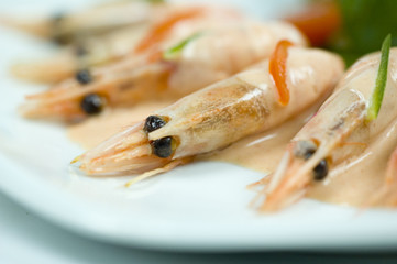 shrimp with cocktailsauce close-up