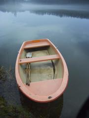 rosaboot