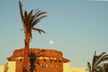 egyptian moon