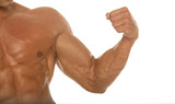 muscular athletic body builder arm poster