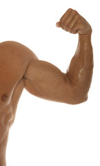 muscular body builder arm