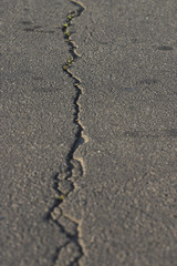asphalt with crack