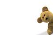 Leinwanddruck Bild - teddy peeking