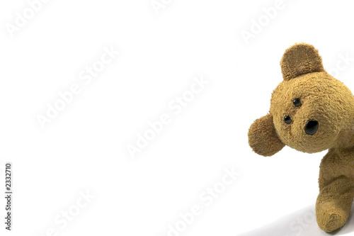 Leinwanddruck Bild teddy peeking