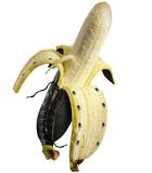 banane en cuir