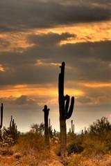 desert storm approaching 2