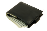 wallet with money poster