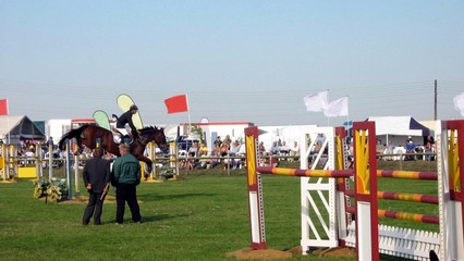 course builders and horse rider in showjumping