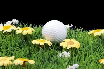 golfball auf einer wiese
