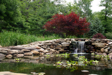 waterfall and pond