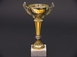 gold cup - prize