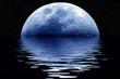 Leinwandbild Motiv blue moon.